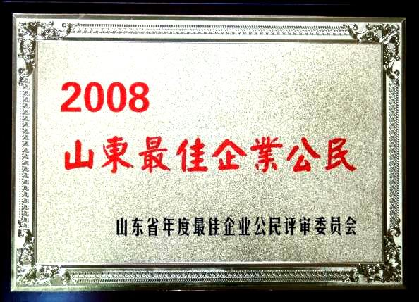 2008 Shandong best corporate citizenship